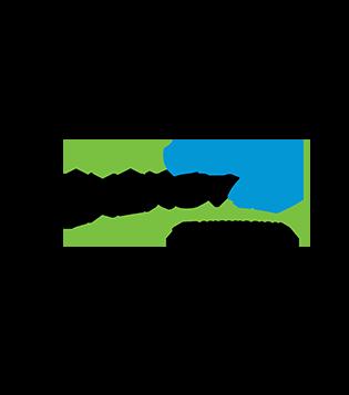NextEra Energy, Inc  | Subsidiaries