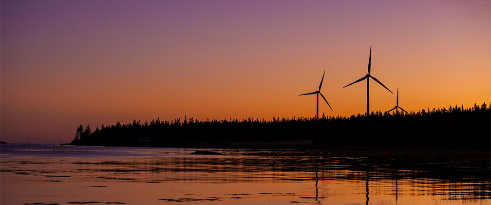 NextEra Energy Wind Farm Sunset