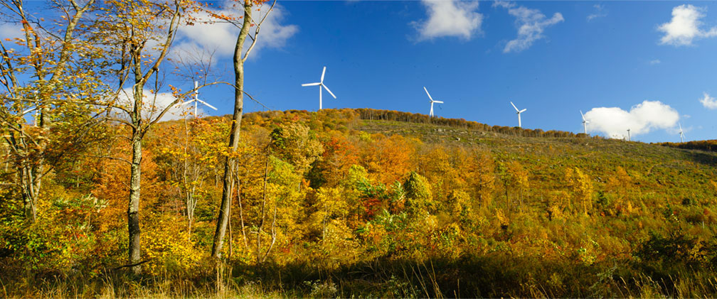 West Virginia Mountaineer Wind Energy Center